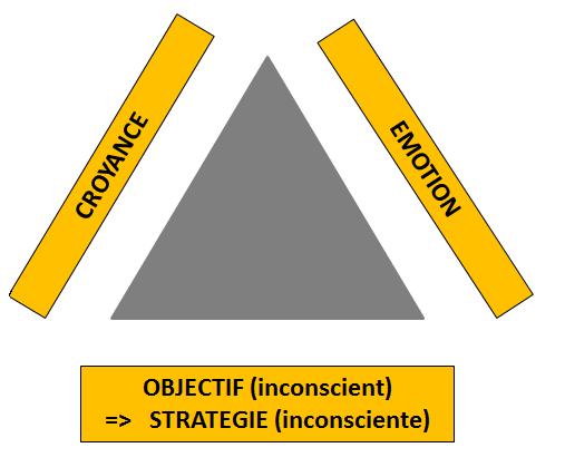 croyances émotions stratégies
