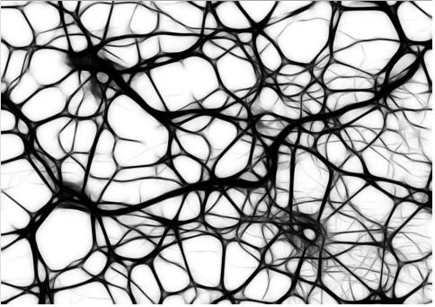 synapses noires