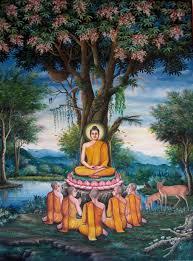 Joyau dans le Lotus