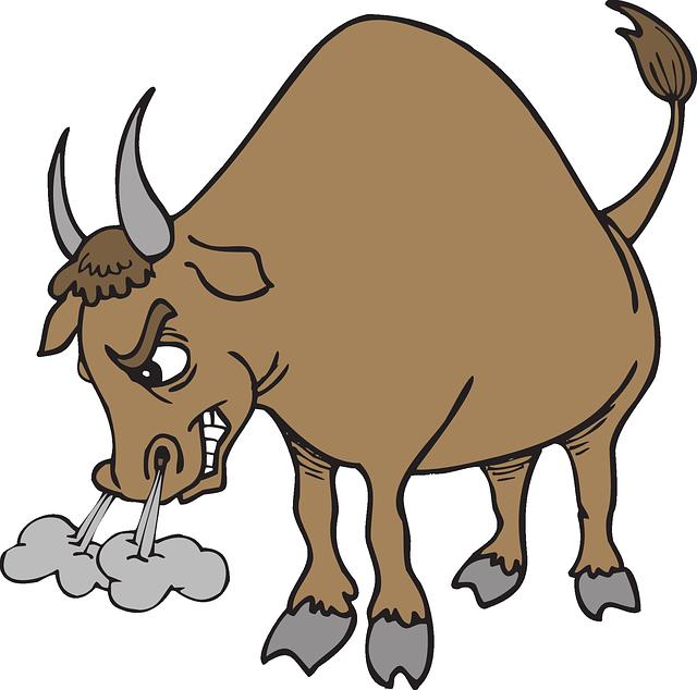 15.2. taureau en colère