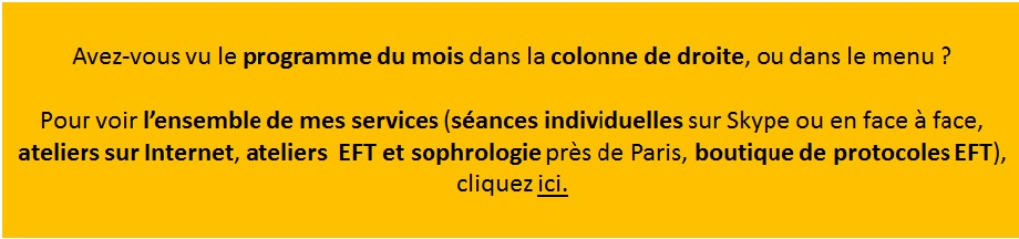 Mes services : séances individuelles, ateliers sur Internet et à Paris
